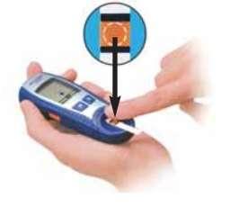 Glucose test fig4